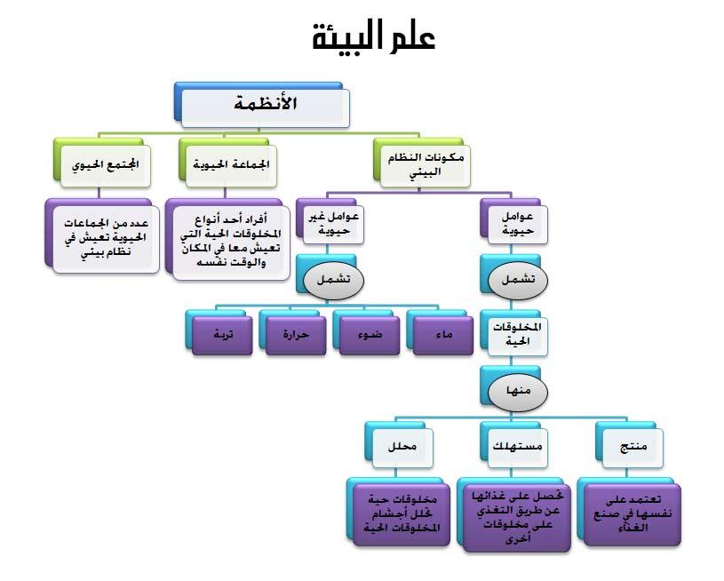 مخطط العلاقة بين مكونات البيئة والعوامل التي تؤثر فيها