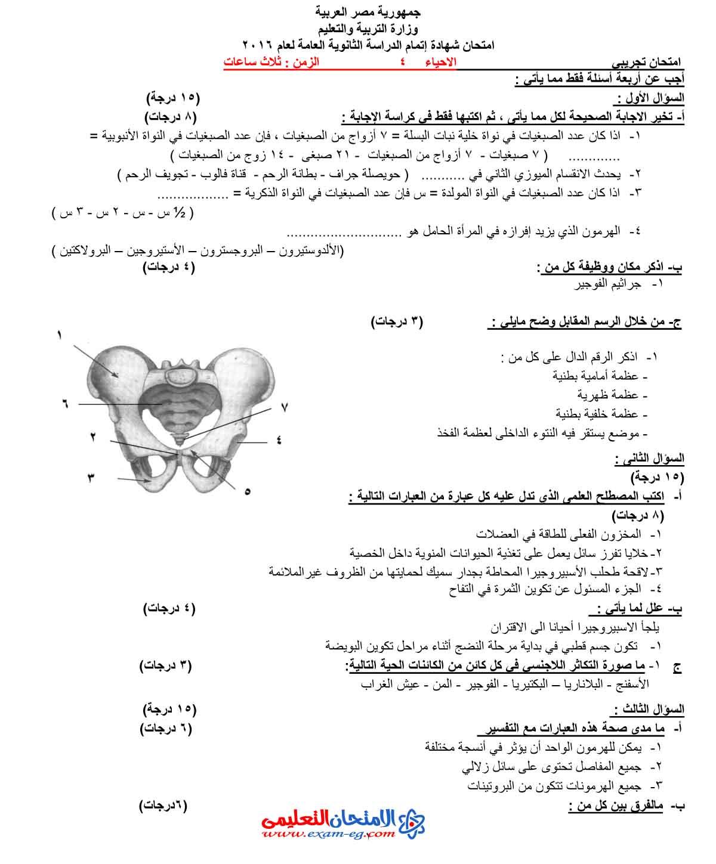 امتحان الاحياء 4 - الامتحان التعليمى-1
