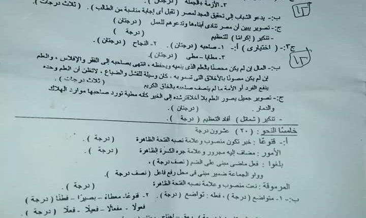 توزيع درجات امتحان اللغة العربية للصف الثالث الاعدادى 2019 (1)