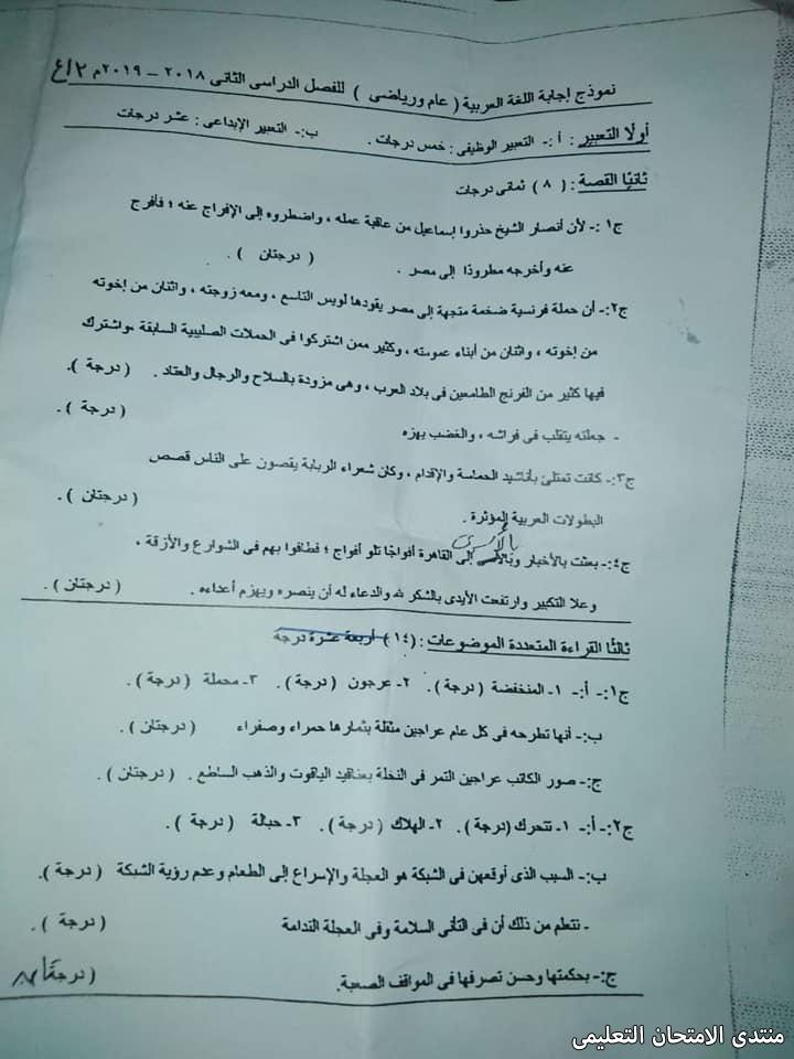 توزيع درجات امتحان اللغة العربية للصف الثالث الاعدادى 2019 (2)