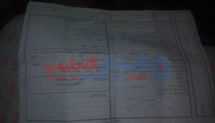امتحان عربى تانية ابتدائى الابراهيمية