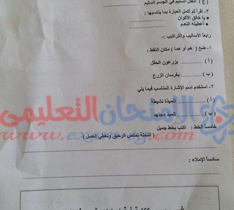 امتحان عربى تانية ابتدائى جرجا